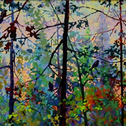 18 - Morning Light Through Trees