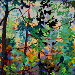 9 - Evening Light With Ravens II