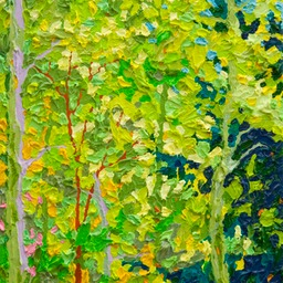 Aspens of Hyde Park LO Web