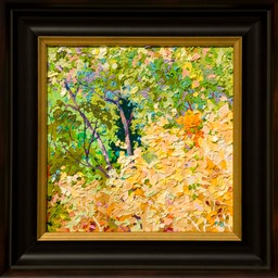 Autumn Pinal Creek IILo