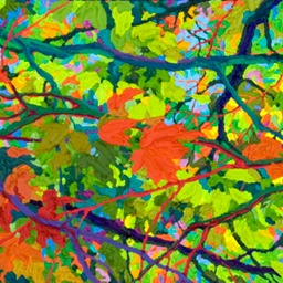 Balaams Wood - Reaching Out LO Web