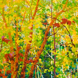 "Balaams Wood - Spring Cherry Birches - 30"" x 36"""