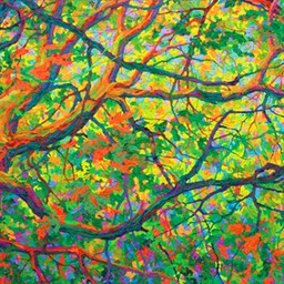 Balaams Wood Heart of Oak II LO