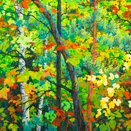 "Floating Maples Aging Gracefully - 46"" x 46"""