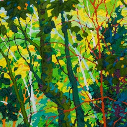 Gaze - Light and Shade I LO