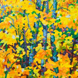 "Gaze - Skirts of Light - 14"" x 11"""