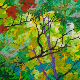 Glimpse - Evening Song Lone Aspen I LO
