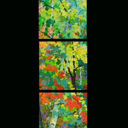"Glimpse Set of 3 - September Aspens - 13"" x 13"""