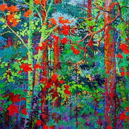 Immersed in the Timeless Forest LO