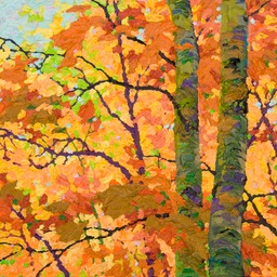 "In Autumn Glory II - Glimpse - 13 "" x 13"""