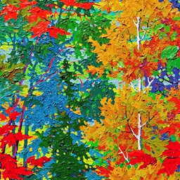 Kolbe Forest - Grace LO