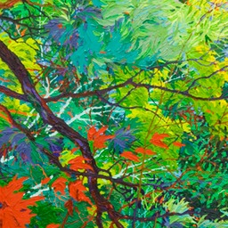 "Green Doorways - Pine Shadows  - 72"" x 24"""
