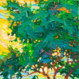 Point Lobos Light I Lo Web