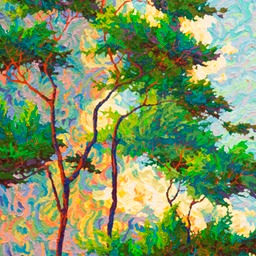 Point Lobos Rain Dance Lo