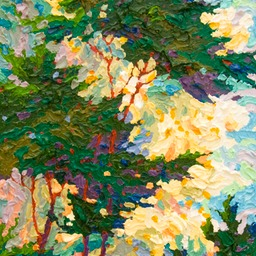 Point Lobos Rain Dance Glimpse LO