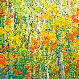 View from Shadow Mountain - 6ft x 6ft