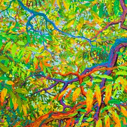 Shelter of Balaams Wood LO Web