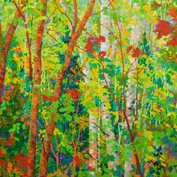 Stand of Cherry Birches LO Web