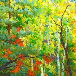 "Sunset Through Aspens - 40"" x 40"""