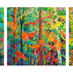"Triptych - Edge of the Forest I II III - 46"" x 46"" x 3"